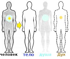 *** Человек = Дух + душа + тело ***
